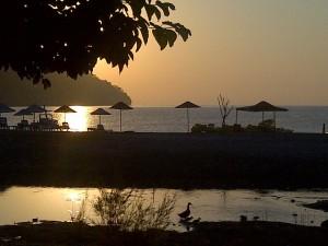sun village.jpg1